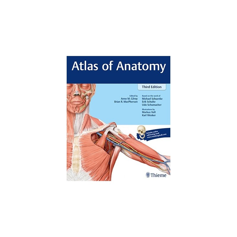 Gilroy 3.ed. Atlas of Anatomy - MedPharm
