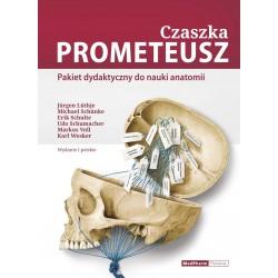 Czaszka PROMETEUSZ - Pakiet dydaktyczny do nauki anatomii